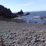 Berry beach is an excellent place to explore and look for fossils or hunt among the rock pools.